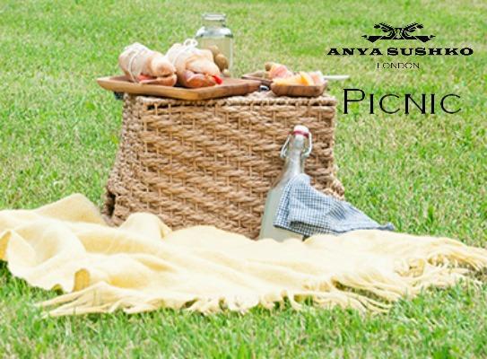 anya sushko picnic